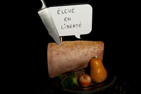 Aurelie-Gandoin_Eleve-en-liberte
