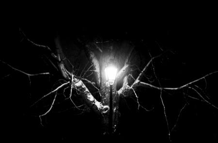 AurelieGandoin_Streetlights-3