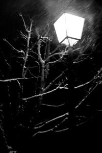 AurelieGandoin_Streetlights-7
